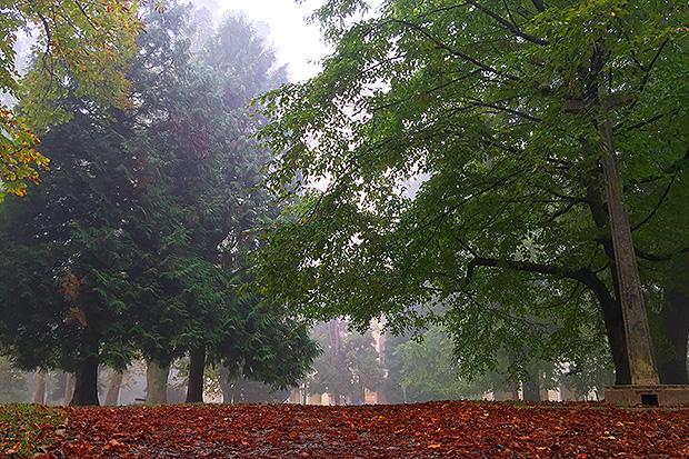 Gradski park u Virovitici (aj)