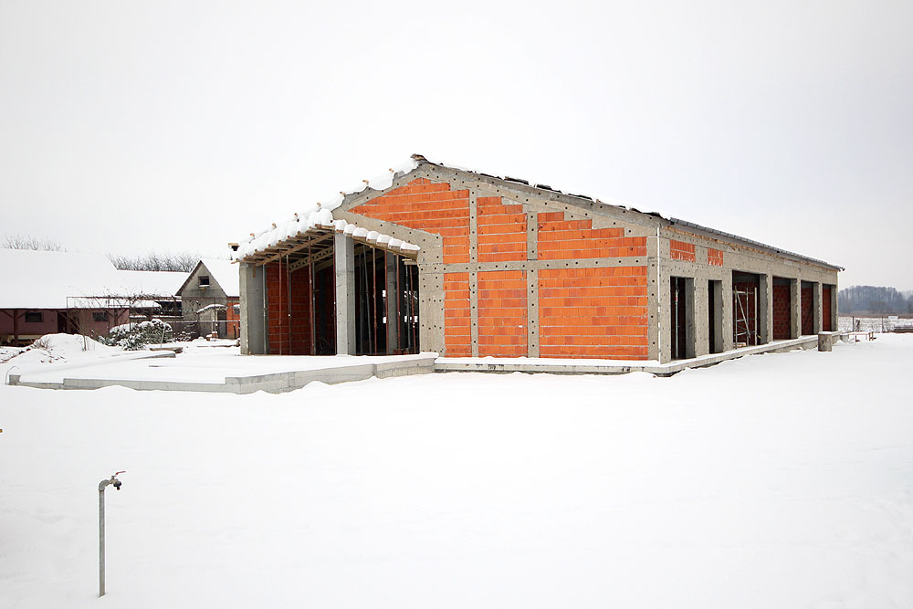 Bušetina