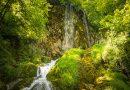 Park prirode Papuk po prvi put će se predstaviti na sajmu Viroexpo